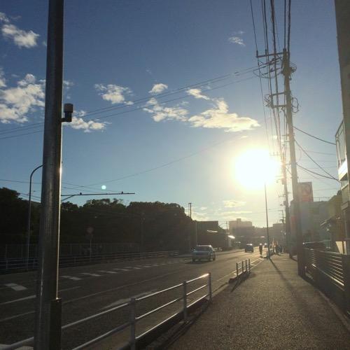 IMG_9953_resized_2015-11-15